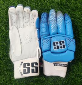 SS DK-19 Players Blue Cricket Batting gloves Men's