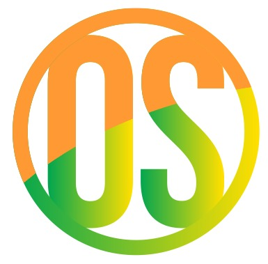 DSC Blu Brite English Willow Cricket Bat Men's