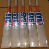 BAS Trainer English Willow Cricket Bat Mens Size