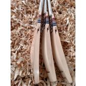 BDM Dynamic T-20 English Willow Cricket Bat Mens Size